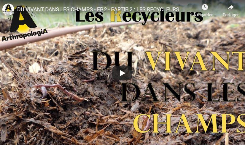 DU VIVANT DANS LES CHAMPS - Les auxiliaires, ces collègues invisibles -Episode 2
