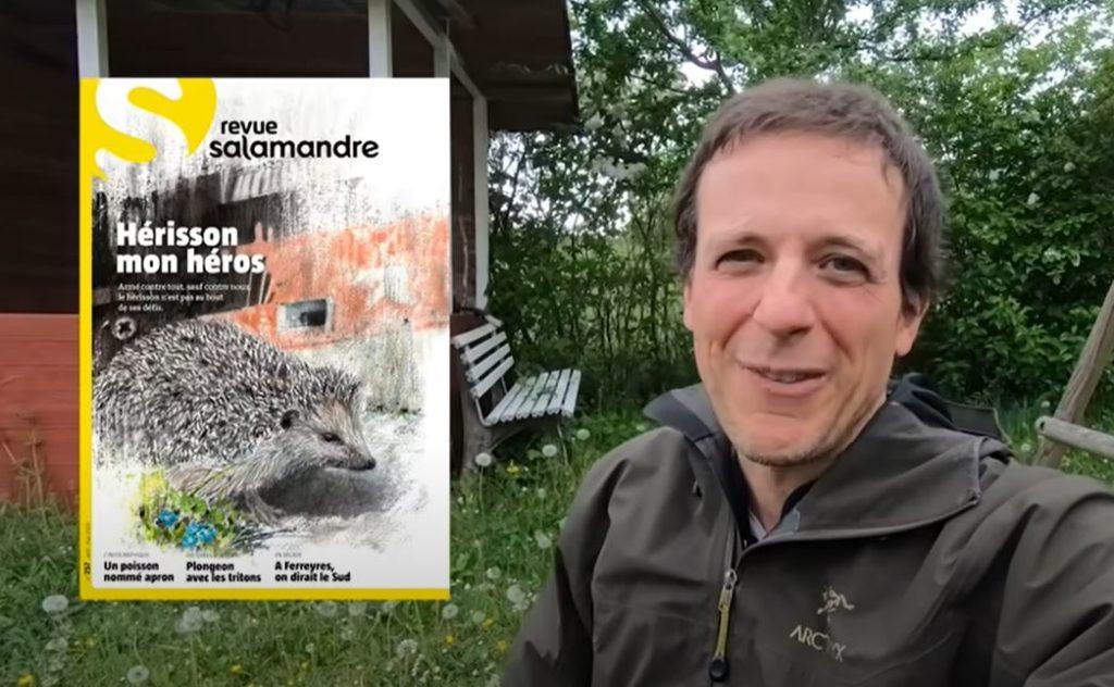 Le hérisson d'Europe - La salamandre - Julien Perrot